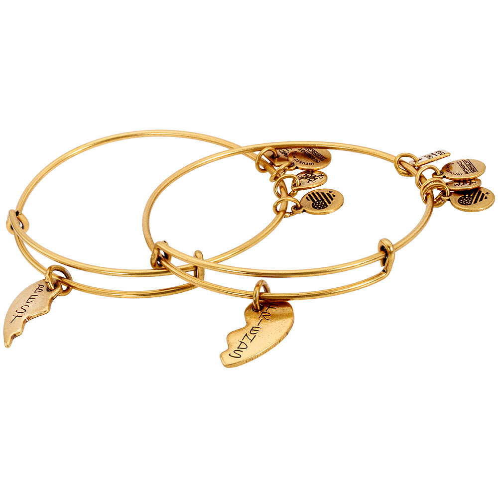 1842d009009 Alex And Ani Best Friends Charm Bangle Set Of 2 Rafaelian Gold CBD12BFRG